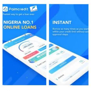 Palmcredit Loan App 2020