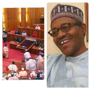 N850bn Loan Request By President Buhari Gets Senate Approval