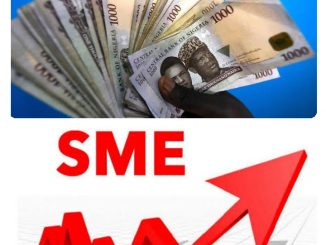 Top 6 Online Working Capital Loan Lenders To SMEs