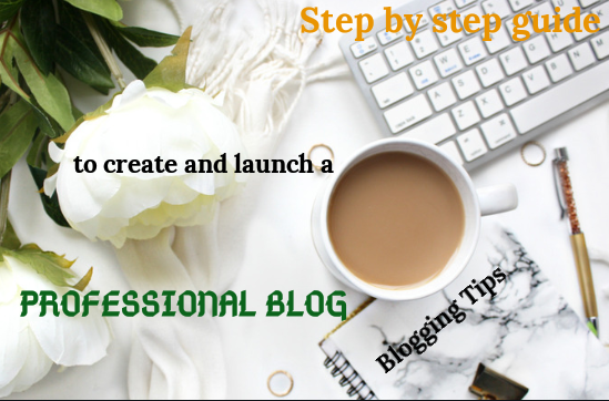 Step by step guide to create a professional blog