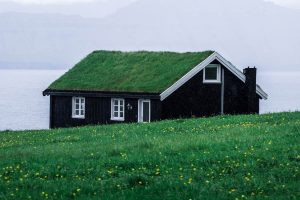 a house with a grass roof