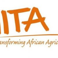 2020 IITA Agricultural Project Training With Loan & Support – Apply Now
