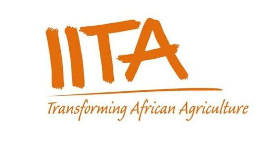 2020 IITA Agricultural Project Training With Loan & Support - Apply Now