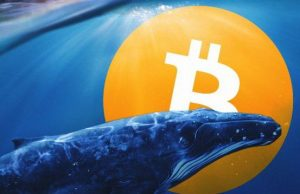 $350 Million Worth Of Bitcoin Moved By A Large Entity As It Nears $30,000