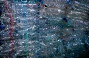 A bunch of used plastic bottles for recycling